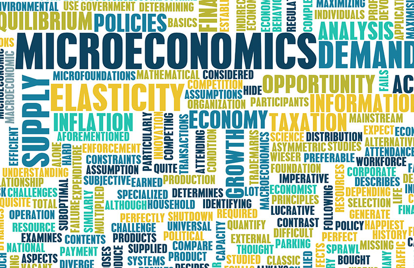 flexed-course-principles-of-microeconomics-large-image