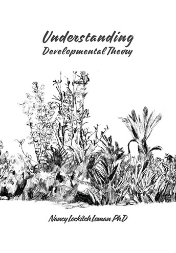 Understanding Developmental Theory